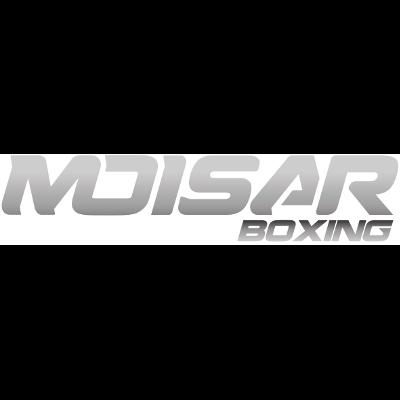 moisar_boxing